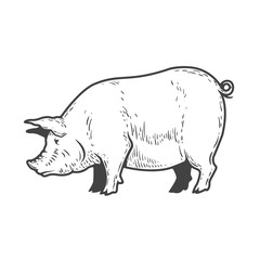 Pig illustration isolated on white background. Design elements for logo, label, emblem, sign, menu. Vector illustration.