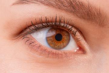 Brown female eye wearing contact lenses