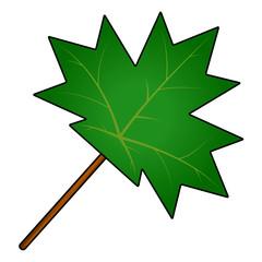 maple leaf vector symbol icon design.