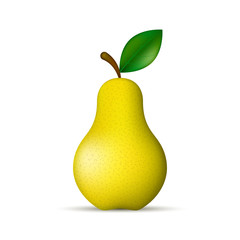 Yellow pear realistic isolated illustration. Vector.