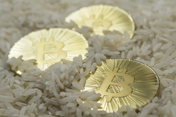 Shiny gold bitcoin coin