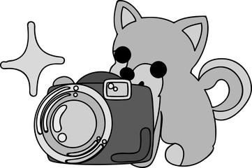 The cute dog and a camera
