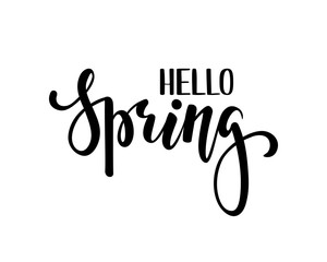 Hello Spring. Hand drawn calligraphy and brush pen lettering. design for holiday greeting card and invitation