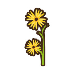 cartoon marigold flower decorative plant vector illustration eps 10