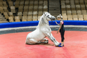 Female trainer to train a horse