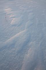 Windblown snow patterns