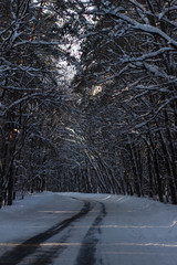 Cars with winter tires on snow-covered road