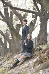 サクラの木の下のフレッシュマンと女子高校生