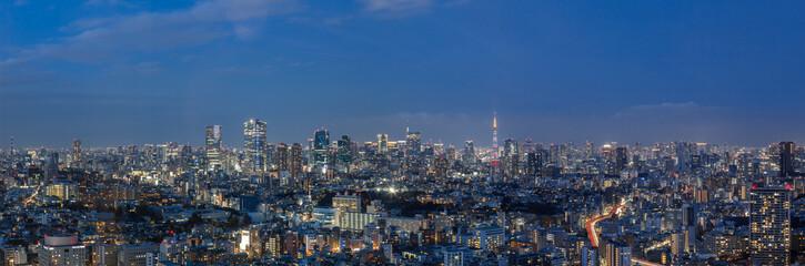 Tuinposter Tokyo 東京都港区 夜景
