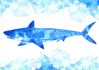 Shark and water.Watercolor hand drawn illustration.Underwater animal art.
