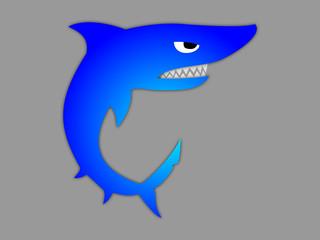Shark illustartion