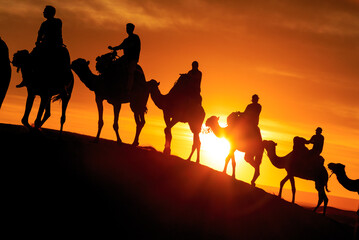 Caravan of camels with tourist in the desert at sunset