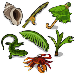 Tropical plants, rod, crab, lizard, and others
