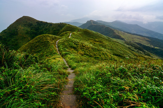 Peaceful path through green coastal hills and grasslands on the Caoling Historic Trail in Taiwan