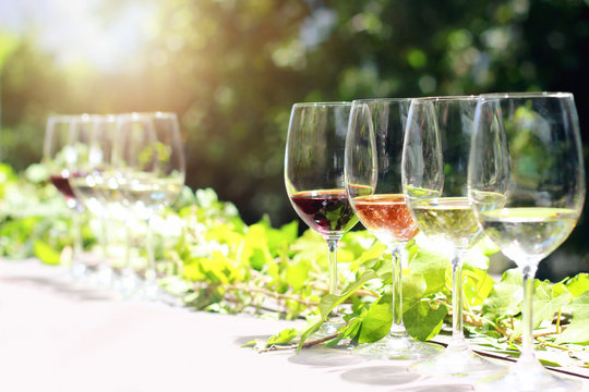 Collection of wine glasses on table for tasting outdoors