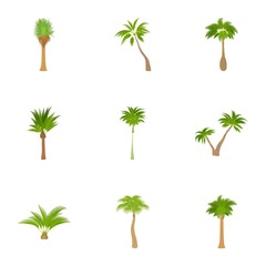 Different palm icons set, cartoon style