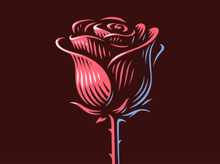 Red rose - vector illustration, emblem design on dark background