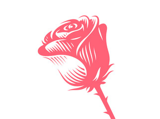 Red rose - vector illustration, emblem design on white background