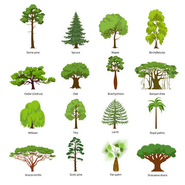 Flat green garden forest icons trees vector. Nature concept.