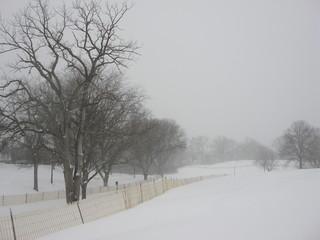 Columbus, Ohio Winter