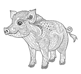 Pig coloring book page for adult in doodle style. Animal vector illustration for tattoo, print and t-shirt isolated on white.