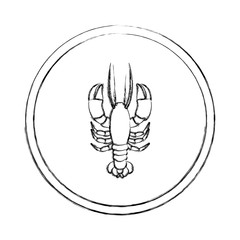 monochrome blurred line contour with lobster in circular frame vector illustration