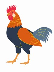 illustration of rooster, vector draw