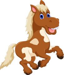 funny horse cartoon jumping