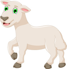 cute baby goat cartoon posing