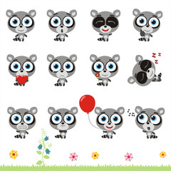 Big set cute little raccoon. Collection isolated cartoon raccoon in different poses.