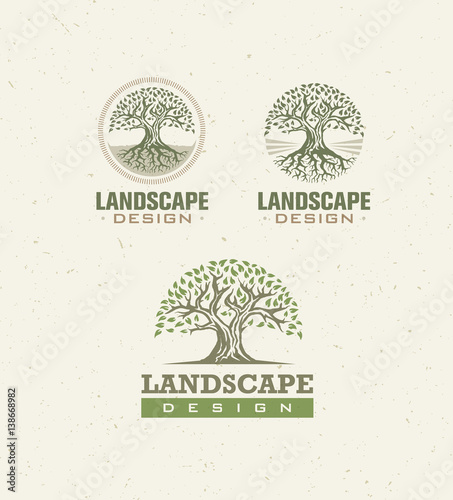 Landscape design creative vector concept tree with roots for Landscape design paper