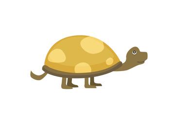African Spurred Tortoise vector illustration