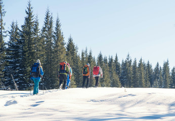 Foto op Plexiglas Wintersporten a group of tourists with backpacks hiking in winter mountains and forest