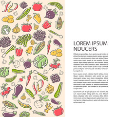 Poster template with hand drawn vegetables flat style vector