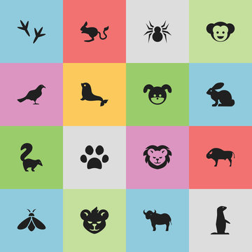 Set Of 16 Editable Zoo Icons. Includes Symbols Such As Honey, Gull, Arachind And More. Can Be Used For Web, Mobile, UI And Infographic Design.
