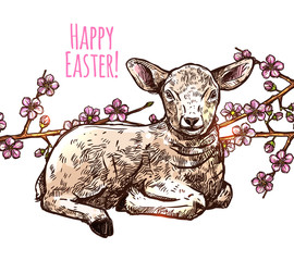 PrintHand Drawn Happy Easter Baby Sheep. Sketch Greeting Illustration With Lamb And Apple Blossom
