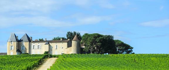 Vineyard and Chateau, Sauternes Region, Aquitaine, France