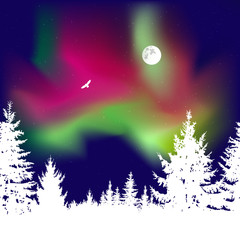 Abstract white silhouette of coniferous trees on the background of colorful sky.  Flying eagle. Moonlight. Green and red northern lights.