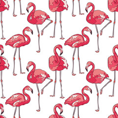 Colorful pink flamingos. Seamless vector pattern.