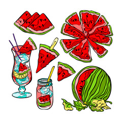 Watermelon. Isolated vector objects on white background.