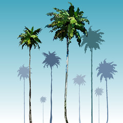 painted tall coconut palm trees on blue sky background
