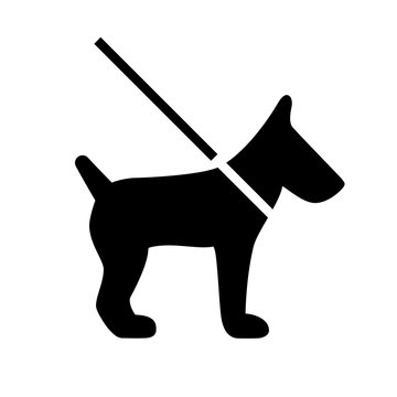 Dog on leash vector icon