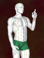 Acupuncture model M-POSE EHP-02-8, 3D illustration