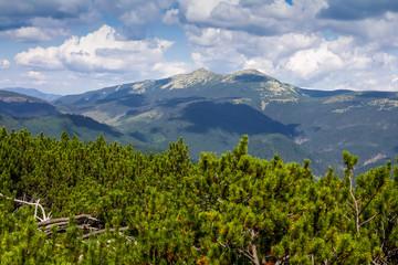 Beautiful sandy landscape of the Carpathians, Gorgan, Mount Syvulya