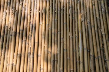 Walkway wood texture a natural