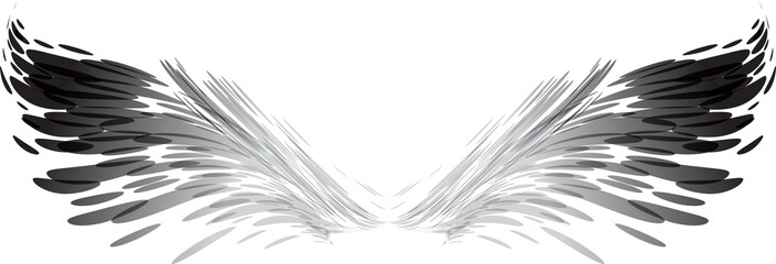 Abstract black and white wings Wall mural