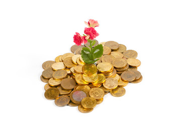 beautiful flower and metallic gold Russian coins as a symbol of prosperity and growth of the economic system