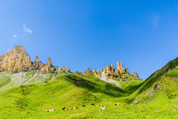 mountains by Seiser Alp in South Tyrol