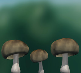 3d three-dimensional mushroom on a bright background