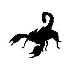 Scorpio silhouette. Black white icon. Vector illustration.
